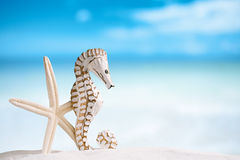 Seahorse with white starfish on white sand beach, ocean,  sky an. Seahorse with white starfish on white sand beach, ocean,   sky and seascape, shallow dof Royalty Free Stock Images