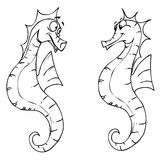 Seahorses. Two cartooned seahorses in line art stock illustration