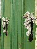seahorses Стоковая Фотография