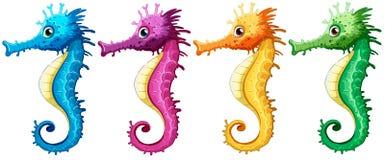 seahorses Imagens de Stock Royalty Free