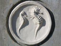 Seahorses Fotografia Stock