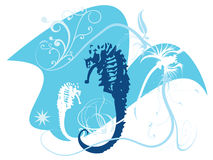 seahorses Стоковые Изображения
