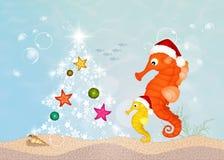 Seahorses celebrate Christmas. Illustration of seahorses celebrate Christmas Stock Image