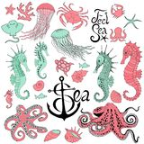 Seahorses with jellyfish, octopus, crab and other royalty free illustration