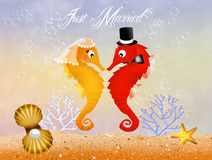 Seahorses in love Stock Photo