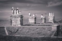 Seahouses van Northumberland royalty-vrije stock foto
