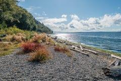 Seahurst Beach Shoreline. A view of the shoreline at Seahurst Beach in Burien, Washington royalty free stock photos