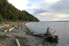 Seahurst Park Beach, Cloudy Skies. Driftwood strewn along the beach in Seahurst Park. Landscape view of Puget Sound with cloudy skies stock photography