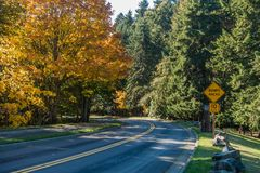 Seahurst Park Entrance 3. A view of the entrance to Seahurst Park in Burien, Washington. It is Autumn royalty free stock images