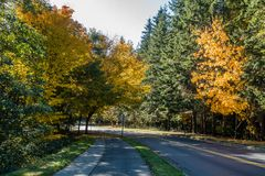 Seahurst Park Entrance. A view of the entrance to Seahurst Park in Burien, Washington. It is Autumn stock images