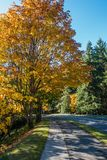 Seahurst Park Entrance 2. A view of the entrance to Seahurst Park in Burien, Washington. It is Autumn royalty free stock photo