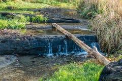 Seahurst Park Stream. A view of a stream at Seahurst Park in Burien, Washington stock image