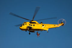 Seaking Helicopter Royalty Free Stock Photos