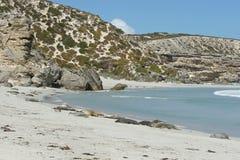 Seal Bay NP, Kangaro Island, Australia Royalty Free Stock Photography