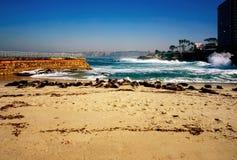 Seal beach in California stock image