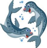 Seal cartoon Stock Images