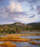 Seal Cove Pond Royalty Free Stock Images