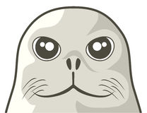 Seal dog face Royalty Free Stock Image