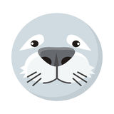 Seal Face Vector Illustration in Flat Design Royalty Free Stock Photos