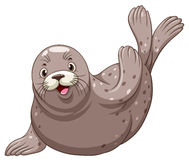 Seal with happy face Stock Photography