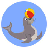 Seal plays with the ball icon. Flat design, vector illustration, vector Stock Photo