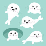 Seal pup baby harp set. Ice-hole Cute cartoon character. Blue background. Flat design Royalty Free Stock Photography