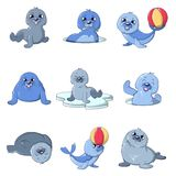 Seal pups cute character icons set, cartoon style. Seal pups cute character icons set. Cartoon illustration of 9 seal pups cute character vector icons for web Royalty Free Stock Photo