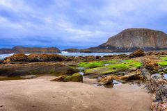 Seal Rock Beach on the Oregon Coast. Dark clouds adds to this seaside landscape view seen from Seal Rock Beach in Oregon royalty free stock image