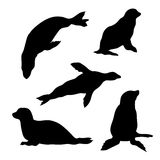 Seal set. Of silhouettes royalty free illustration