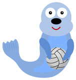 Seal volleyball Royalty Free Stock Images