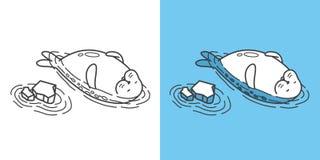 Seal walrus vector sea lion swim illustration doodle. Seal walrus vector sea lion swim cartoon character illustration doodle royalty free illustration