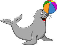 Seal with wicolorful ball Stock Photography