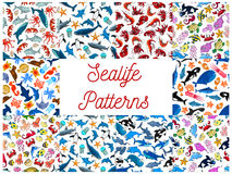 Sealife animals and fishes seamless patterns Stock Photos