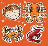 Sealife cartoon character pack. Vector of sealife cartoon character pack vector illustration