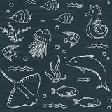 Sealife chalkboard seamless pattern Royalty Free Stock Image