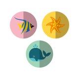 Sealife Logo Template Stock Photos