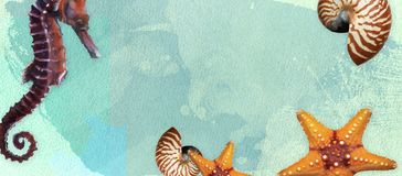 Summer banner with oil paint and watercolor brushes. Seashell, seahorse, starfish on a marine background with text space. royalty free stock photography