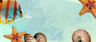 Summer banner with oil paint and watercolor brushes. Seashell, starfish and fish on a marine background with text space. stock illustration