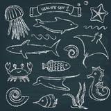 Sealife svart tavlauppsättning 2 Arkivbild