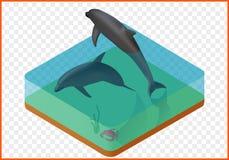 Sealife-Vektorillustration Lizenzfreie Stockfotografie