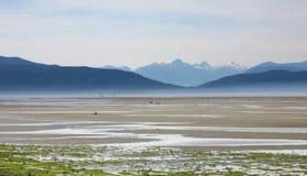 Sealine de Vancouver Images libres de droits