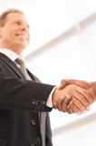 Sealing a deal. Stock Images