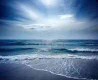 Sealion Seascape. Beautiful Beach on Sealion Island Royalty Free Stock Images
