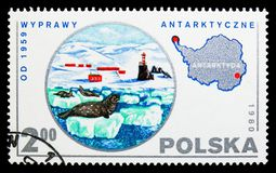 Seals,Antarctica, Polish Scientific Expedition serie, circa 1980. MOSCOW, RUSSIA - SEPTEMBER 15, 2018: A stamp printed in Poland shows Seals,Antarctica, Polish stock photos