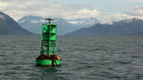Seals lying on buoy. Seals lying in buoy in the ocean Stock Image