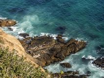 Seals at Malibu, emerald and blue water in a quite paradise beach surrounded by cliffs. Dume Cove, Malibu, California, CA Stock Image