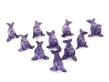 Seals Royalty Free Stock Image