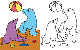 Seals playing with ball COLOR and BW Stock Photo