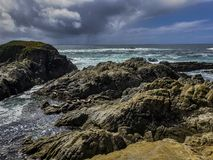 Cypress Point Wildlife Refuge for marine life royalty free stock photo
