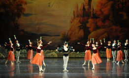 Seaman and wine and beauty-The opening dance-ballet Swan Lake Stock Images